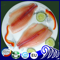 Frozen Red Tilapia Fillet Wholesale Price