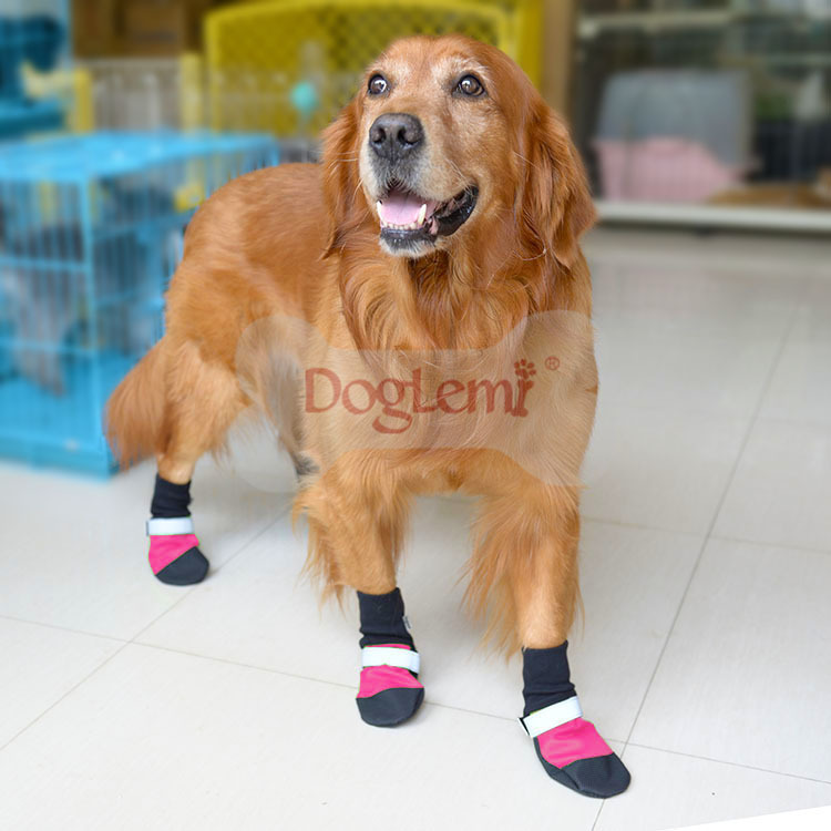 Waterproof Dog rocket Boots Shoes Wholesale Dog Running Shoes for Dog Rain Boots in Shoes 3colors