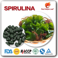 OEM 1000mg Spirulina Platensis Extract Powder Supplement Hard Capsule