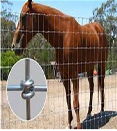 No Climb Horse Wire Fence, Galvanized Field Fence