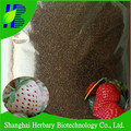 2017 Hot sale Red White Strawberry Seeds
