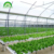 2019 high quality indoor Hydroponics growing system with NFT PVC pipe for Strawberry grow