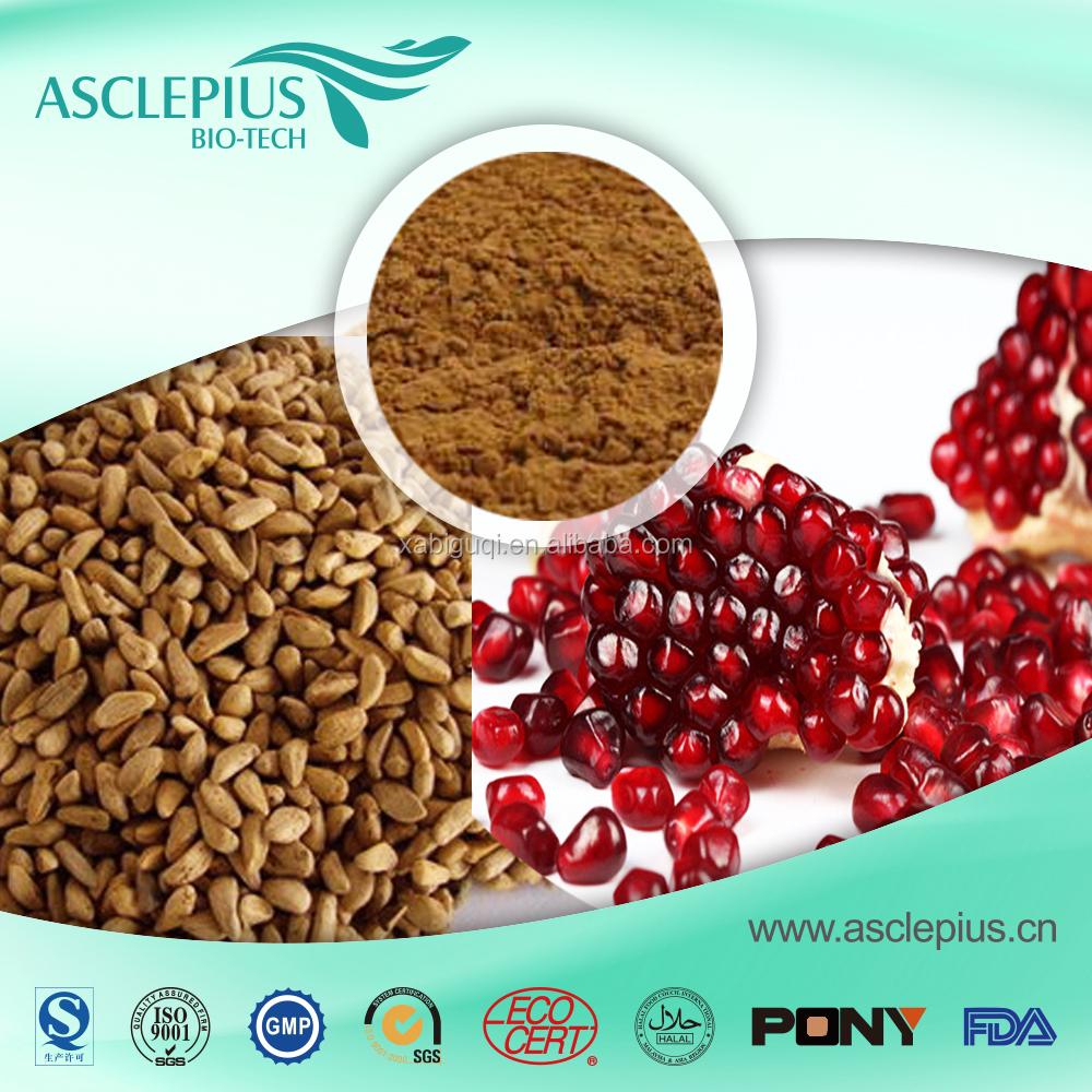 Factory Supply High Quality Pomegranate Seeds Extract Powder
