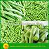Wholesale Chinese Frozen Green Beans Cut
