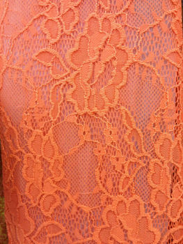 pg48 nice and popular wedding dress lace embroidey