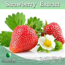 Strawberry Fruit P.E.,Strawberry P.E.,Strawberry Fruit Extract Powder 5:1 10:1