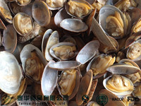 Frozen Seafood Boiled Clam Export to Japan