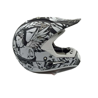 China CE dirt bike pit bike free motorcycle helmets