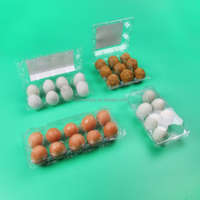 Custom Clear 6 8 10 Egg Package Plastic Tray Food Grade Blister Tray