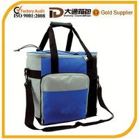 lunch bag for frozen foods and fruits