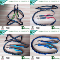 factory direct sale nylon hands free running leash for pet dog