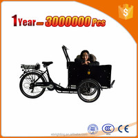 flatbed cargo trike 250w 36v brushless bicycles with three wheels