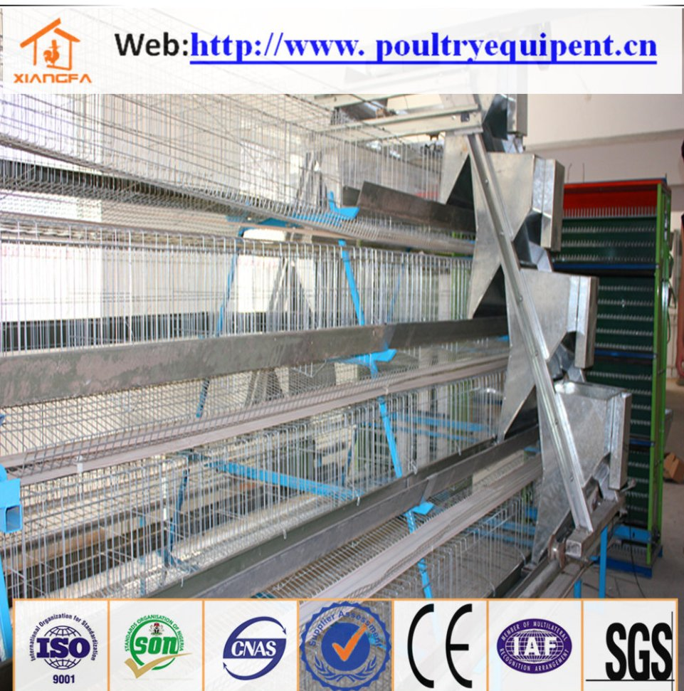 High quality 4 tier chicken layer battery cage for tanzania poultry farm for hot sale
