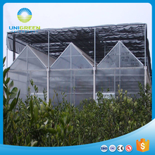 Industrial multi span polytunnel plastic polycarbonate PC Sheet single-span Greenhouse
