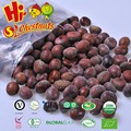 Frozen roasted inshelled chestnut for sale