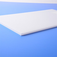 white pp board made in china