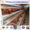 egg chicken cage system