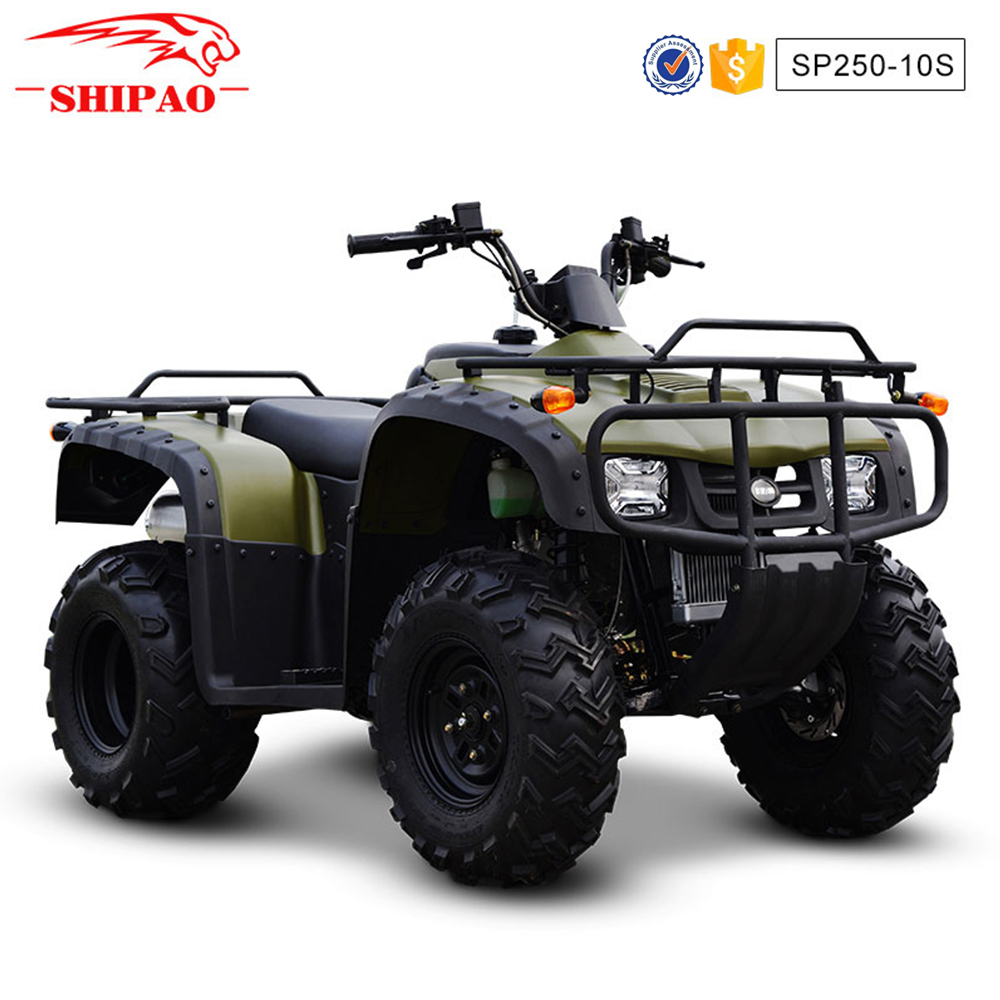 SP250-10 Shipao water cooled atv reverse gear box