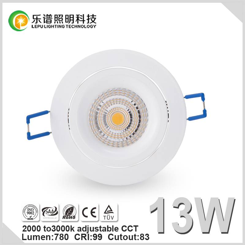 New Design13W 15W Sharp COB Downlight Ra99 CCT Adjustable LED Downlight Price