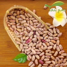 2017 Crop China New Nature Plants Light Speckled Kidney Bean