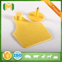 cheap cattle ear tag,plastic ear tags for cattle animal id,livestock equipment