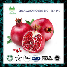 organic pomegranate seed extract oil exporter