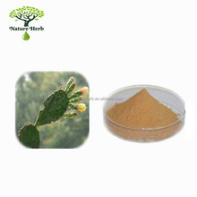 Natural Nopal Cactus Juice Powder Extract Prickly Pears