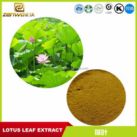 Natural Weight Loss Product Lotus Leaf P.E. Nuciferin Powder