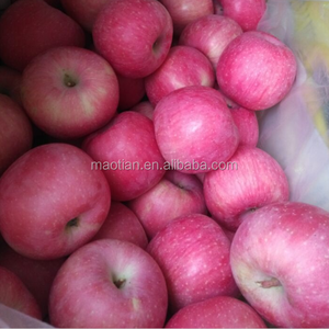 fresh apple fruit From China Producer