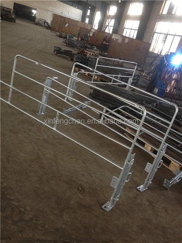 Pig farm farrowing pen sow gestation stall