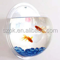 Wall mount unique transparent acrylic indoor fish tank wholesale