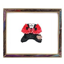 2012 new design mickey mouse red water proof pet clothes,18#,dog clothes ,cat cloteh