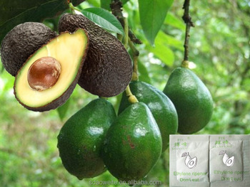 Ethylene Ripener for Avocado