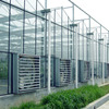 Venlo Multi Span Glass Greenhouse For