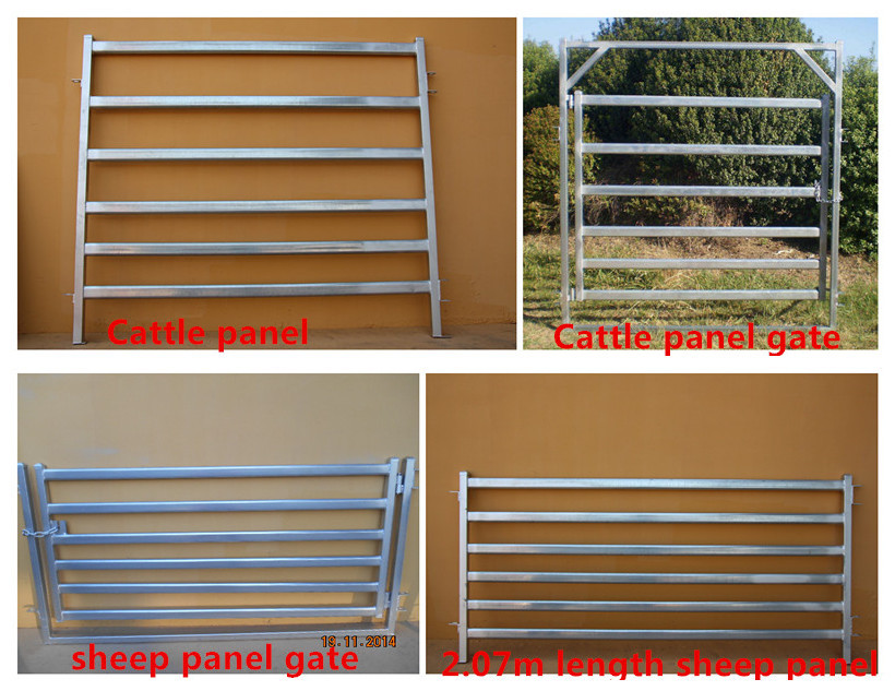 Used livestock cattle yard corral panel