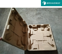 Electronic Biodegradable Molded Pulp Paper Pulp