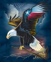 Wall hanging decorative eagle 3d image