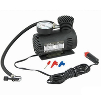 hot selling mini dc 12v air compressor car tyre inflator,factory supply 250/300 PSI car air compressor