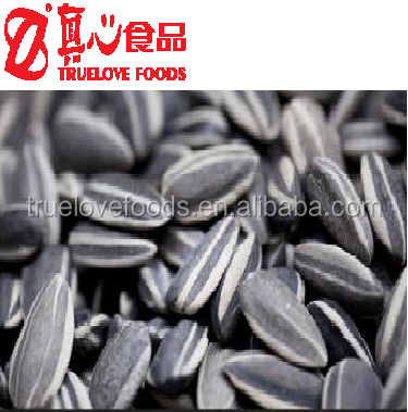 Different Types Of Spiraling Sunflower Seeds