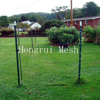 Chinese low price regular duty galvanized or painted used T fence post for sale