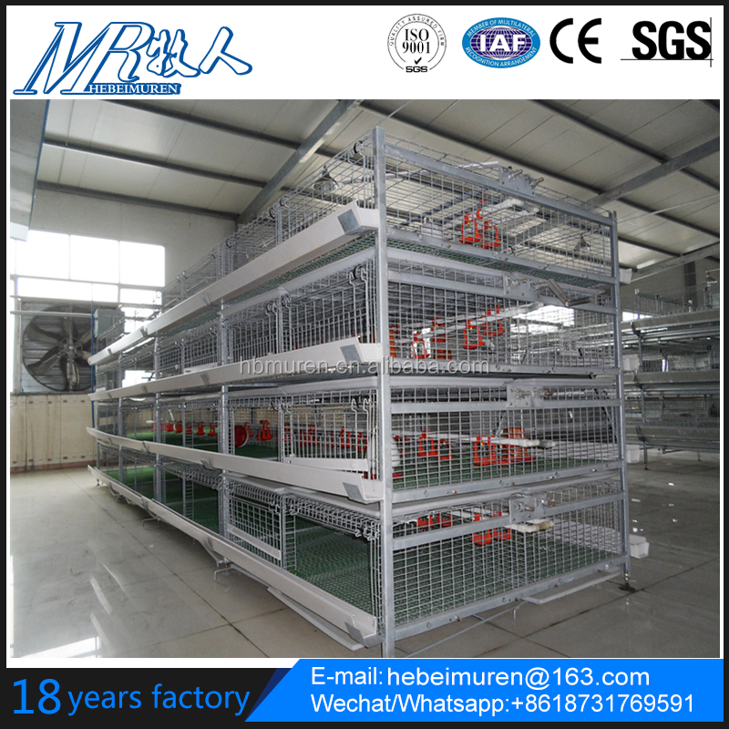Automatic Poultry Farm layer equipment Chicken Cage