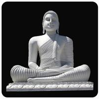 Buy Buddha Statue, Large Buddha Statues for sale