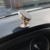 Air vent adjustable 360 degree car cell phone holder & stand for phone