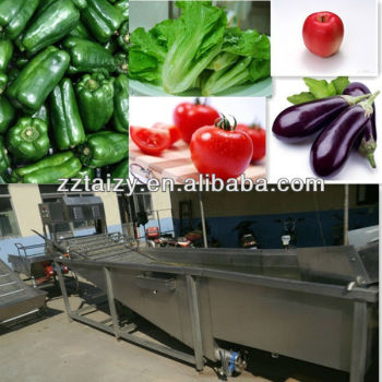 tomato eggplant vegetable washing machine 0086-13838527397