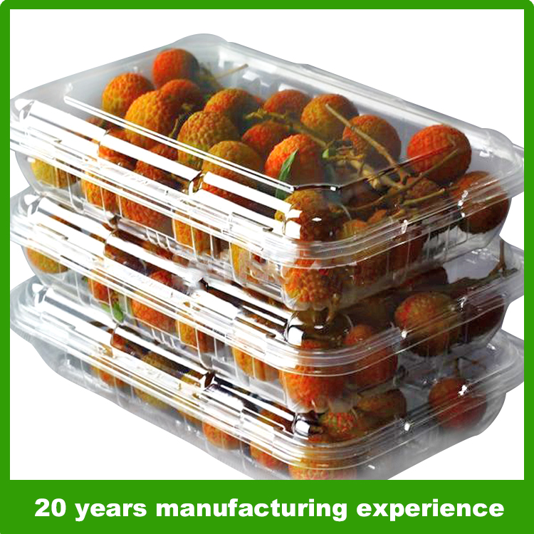 1000g clear plastic fresh fruit and vegetable packaging clear plastic boxes for fruit