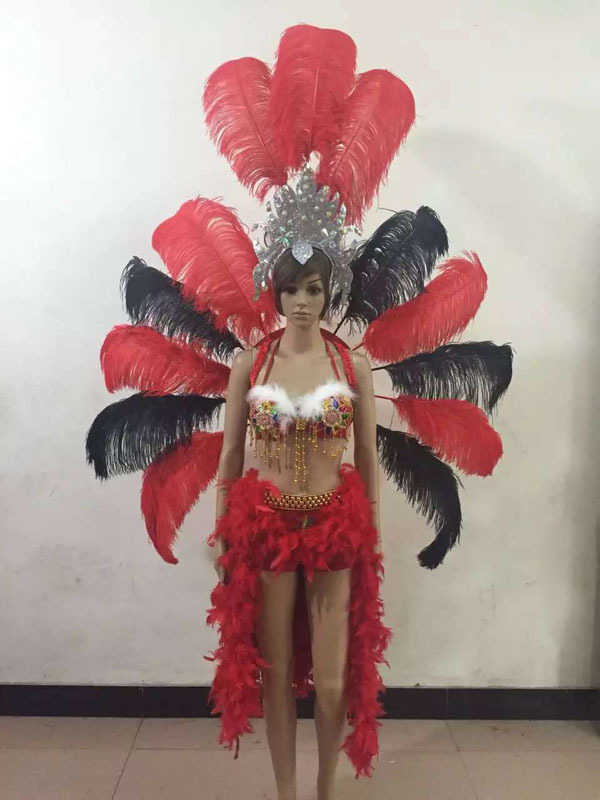 fashion Carnival costume showgirl Feather headdress feather backpieces Feather backpack dyed Ostrich feathers costume