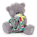 Plush toys lovely holding age number plush teddy bear stuffed seated bear toys