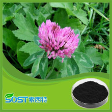 100% Natural TCM herb extract trifolium pratense Leguminosae extract 8% 20% 40% total Isoflavone red clover extract powder
