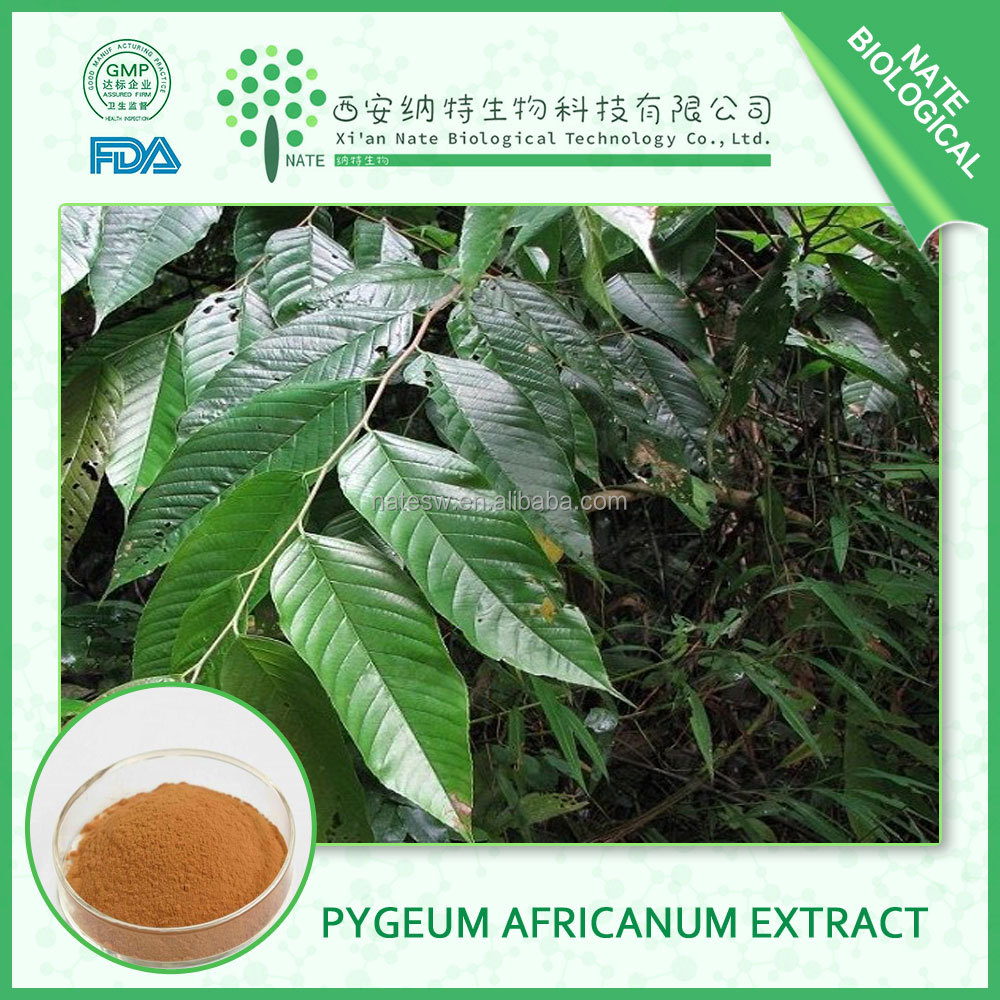 Factory wholesale 10:1 Phytosterols Pygeum Africanum Extract HOT sale