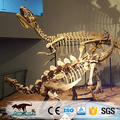OA4988 2017 hot new products dinosaur museum exhibit